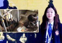 Veterinary Sylvia Huang