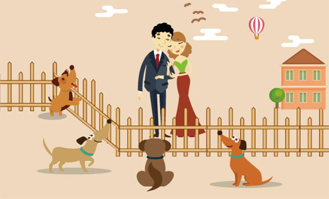 dog adoption centre
