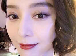 Fan Bingbing tax evasion