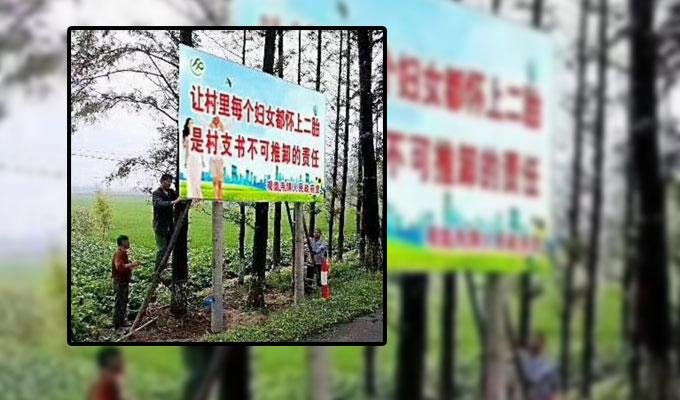 china rural demographics