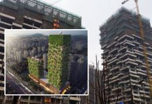 Vertical Forest of Nanjing Grows; Learning from Bosco Verticale