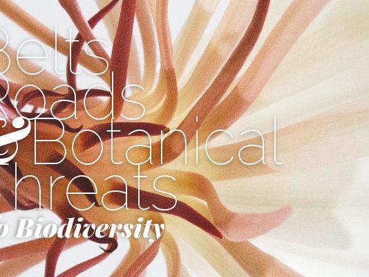 belts-roads-botanic-threats-biodiversity